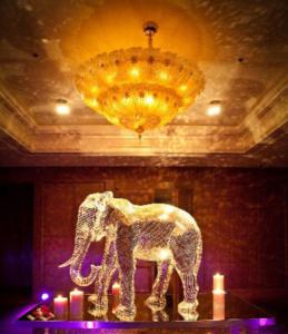 elephant-final-4